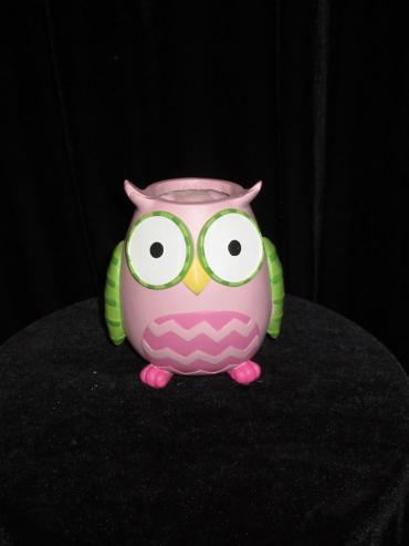 Baby Girl Pink Owl Designers Choice
