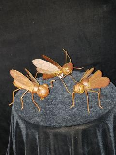 Rustic Insects Collection Set of 3