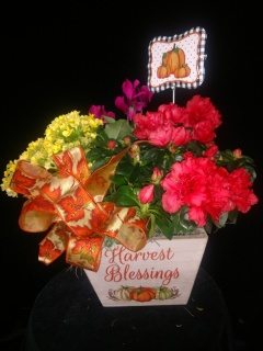 Harvest Blessings planter box