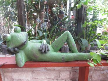 Lounging Frog