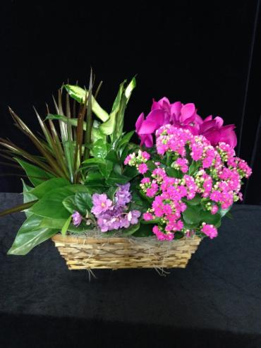Blushing Garden Basket
