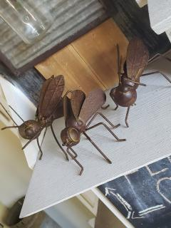 Rustic Insect Assorted Styles