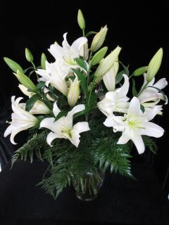 Peaceful Elegance White Lilies